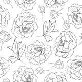 Geschetst van van pioenbloem, knoppen en bladeren patroon stock illustratie