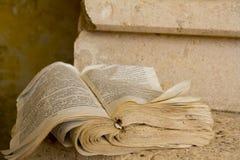 Gescheurd boek Stock Fotografie