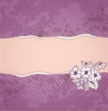 Gescheurd document en violette bloemen Stock Afbeelding