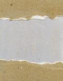 Gescheurd korrelig document royalty-vrije stock afbeelding