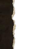 Gescheurde document grenzen Stock Afbeelding
