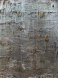 Gescheurde houten achtergrond stock foto