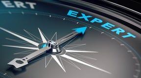 Geschäfts-Experte, Ratekonzept Stockfoto