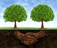 Geschäfts-Teamwork-Wachstum Stockfoto