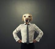 Geschäftsmannmann mit dem Kopf des Hundes Lizenzfreie Stockfotografie