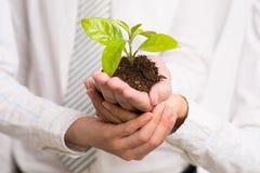 Geschäftswachstum Lizenzfreies Stockfoto