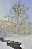 Geschichte des Winters. Lizenzfreie Stockbilder