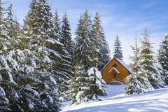 Geschichte des Winters Stockfoto