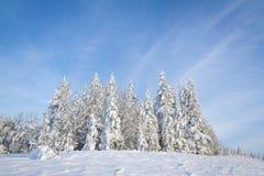 Geschichte des Winters Lizenzfreies Stockfoto