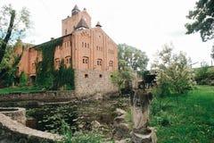 Geschichtsschöner Ziegelstein und Steinschloss bedeckt mit Lianen Stockbild