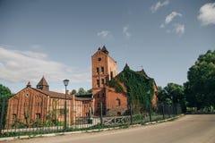 Geschichtsschöner Ziegelstein und Steinschloss bedeckt mit Lianen Lizenzfreie Stockfotos