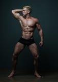 Geschikt mannelijk model Stock Foto