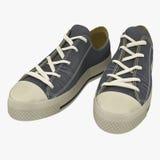 Geschikt voor de tennisschoenen van sportenmensen Voorgesteld op een wit 3D Illustratie Stock Foto