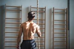 Geschikte jonge mens in gymnastiek topless status, houdend een het beklimmen kabel Achter mening royalty-vrije stock fotografie