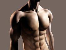 Geschikte mens die borst en abs toont Stock Foto's