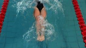Geschikte vrouw die in de pool zwemmen stock videobeelden