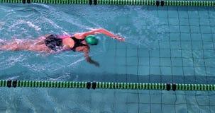 Geschikte vrouwelijke zwemmer die de voorslag in het zwembad doen stock footage