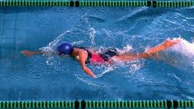 Geschikte vrouwelijke zwemmer die de voorslag in zwembad doen stock videobeelden