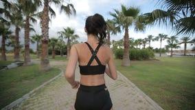 Geschiktheid die jogger bij tropische de joggingtraining van de parkgeschiktheid lopen stock footage