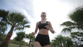 Geschiktheid die jogger bij tropische de joggingtraining van de parkgeschiktheid lopen stock videobeelden