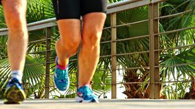 Geschiktheid die jogger bij tropische de joggingtraining van de parkgeschiktheid lopen stock video