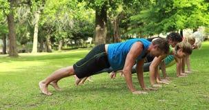 Geschiktheidsgroep die yoga in park doen stock videobeelden