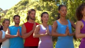 Geschiktheidsgroep die yoga in park op een zonnige dag doen stock footage