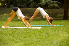 Geschiktheidsklasse Mooie jonge vrouwen die oefening doen bij de zomerpa royalty-vrije stock foto
