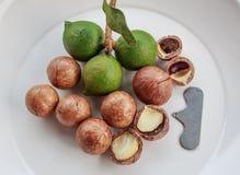Geschilde en unshelled macadamia noten Stock Foto's
