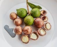 Geschilde en unshelled macadamia noten Stock Foto