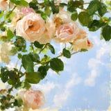 Geschilderd beeld met roze-boom en blauwe hemel. Stock Fotografie