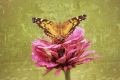 Geschilderd Dame Butterfly spreidt zijn vleugels in dit uit antiqued foto Stock Foto