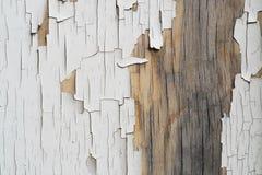Geschilderd hout Stock Afbeeldingen