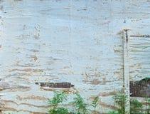 Geschilderd oud gepeld houten wit stock afbeeldingen