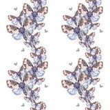 Geschilderd trekkend teddybeer naadloze achtergrond van de waterverf de ruwharige vlinder, heldere kleuring, dik torso, nachtvlin Royalty-vrije Stock Afbeeldingen