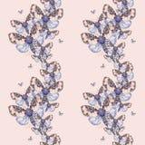 Geschilderd trekkend teddybeer naadloze achtergrond van de waterverf de ruwharige vlinder, heldere kleuring, dik torso, nachtvlin Stock Fotografie