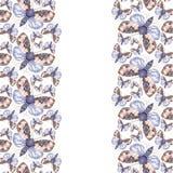 Geschilderd trekkend teddybeer van de waterverf de ruwharige vlinder, heldere kleuring, dik torso, nachtvlinder op witte achtergr Stock Afbeeldingen