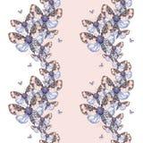 Geschilderd trekkend teddybeer van de waterverf de ruwharige vlinder, heldere kleuring, dik torso, nachtvlinder op witte achtergr Royalty-vrije Stock Foto's