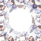Geschilderd trekkend waterverf ruwharige vlinder draag naadloos patroon, heldere kleuring, dik lichaam, nachtvlinder op witte bac Royalty-vrije Stock Afbeelding