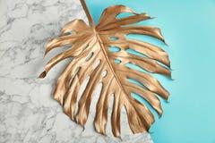Geschilderd tropisch Monstera-blad op kleurenachtergrond royalty-vrije stock afbeeldingen