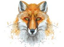 Geschilderd waterverf het schilderen kunstportret van een rode vos Stock Foto