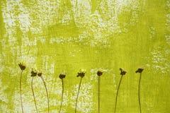 Geschilderde achtergrond en droge bloemen Royalty-vrije Stock Fotografie