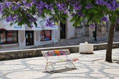 Geschilderde bank in het park, Aveiro, Portugal Royalty-vrije Stock Afbeelding