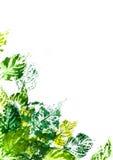 Geschilderde bladeren stock afbeelding