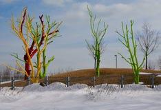 Geschilderde Bomen in de Winter Stock Foto's