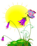 Geschilderde weide met de zon, de bloemen en de vlinders Stock Foto's