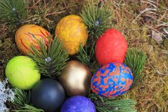 Geschilderde die eieren in het mos worden verfraaid Royalty-vrije Stock Fotografie