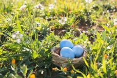 Geschilderde die paaseieren in het nest op het gras, het gebied van de natuurlijke lente wordt verborgen royalty-vrije stock foto