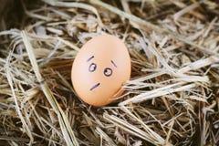 Geschilderde eieren over emotie op het gezicht Stock Foto