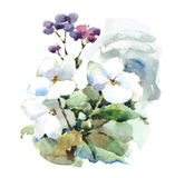 Geschilderde Hand van de de Bloemenillustratie van de waterverf de Witte en Purpere Weide vector illustratie